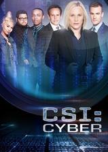 网络犯罪调查 第二季海报
