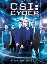 网络犯罪调查 第一季