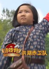 小戏骨:洪湖赤卫队海报