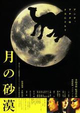 沙漠中的月亮海报