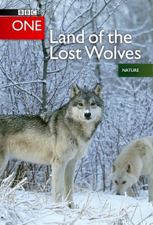 狼群 失落的领地