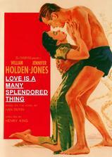 爱情多壮丽海报
