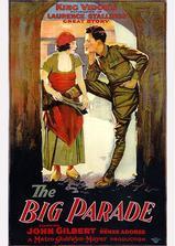 战地之花海报
