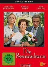 玫瑰园主海报