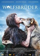 与狼共伍海报