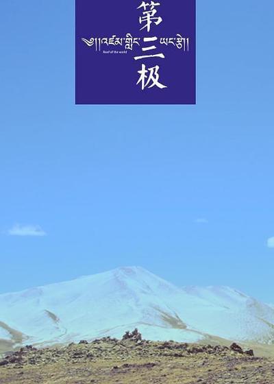 第三极海报