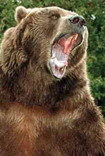 巴特熊 Bart the Bear演员