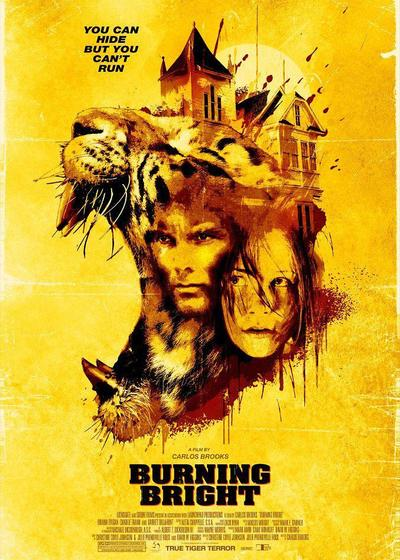 燃烧的夜晚海报