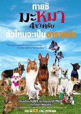 寻找狗托邦海报