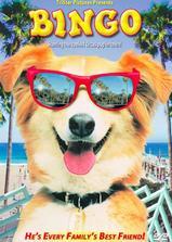 灵犬宾果海报