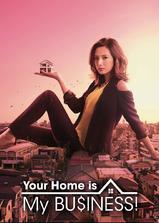 卖房子的女人海报