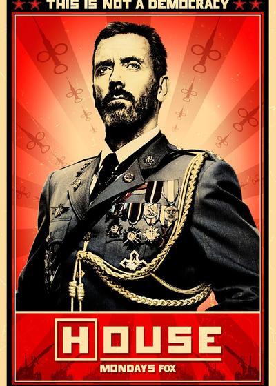 豪斯医生 第八季海报