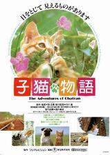 小猫的故事海报