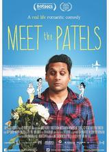 Meet the Patels海报