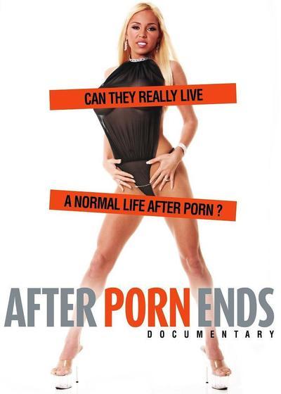 色情之后海报