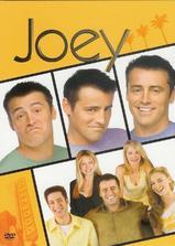 乔伊 第一季海报