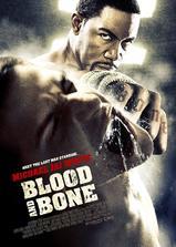 血与骨海报