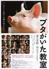 小猪教室海报