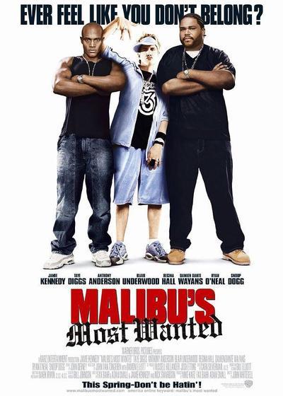 马里布绑票案海报