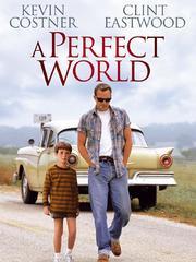 完美的世界