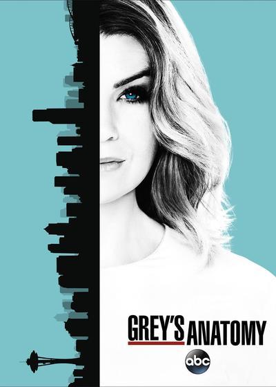 实习医生格蕾 第十三季海报