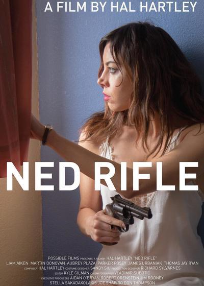 内德的步枪海报