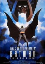 蝙蝠侠大战幻影人海报