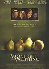 月光情圣海报