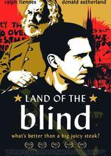 盲者之国海报