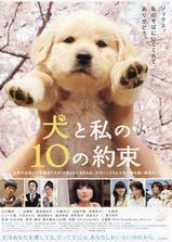 狗狗与我的十个约定海报