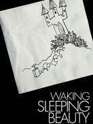 唤醒睡美人