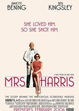 哈里斯太太海报
