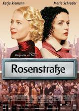 玫瑰围墙海报