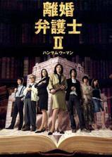 离婚女律师2海报