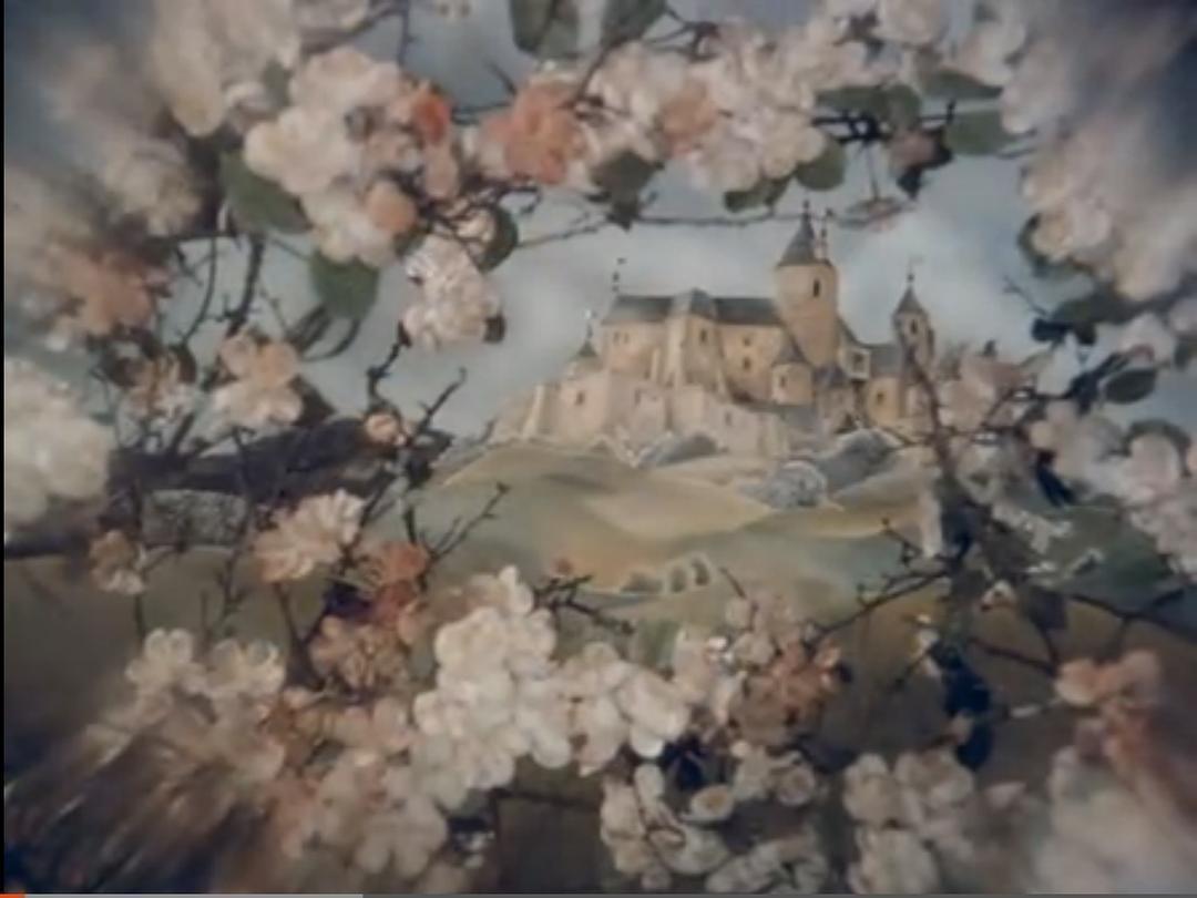 野蔷薇公主和睡美人