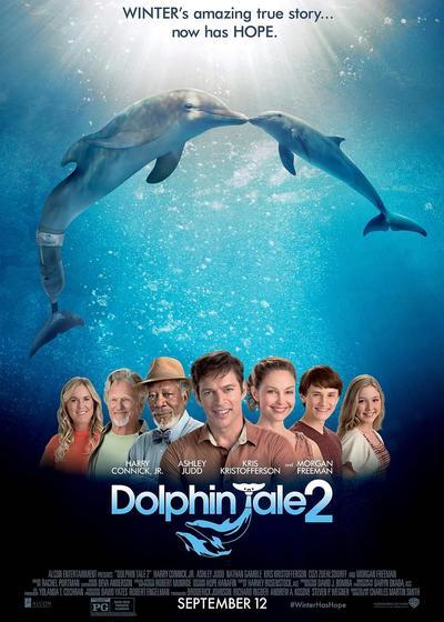 海豚的故事2海报