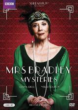 布雷德利夫人探案海报