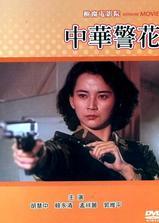 中华警花海报