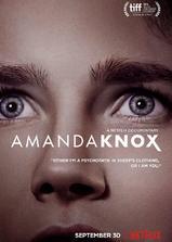 阿曼达·诺克斯海报