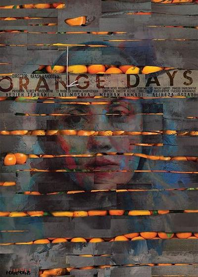 香橙的滋味海报
