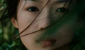 《卧虎藏龙》:江湖规矩下的理智与情感