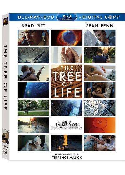 探索生命之树海报