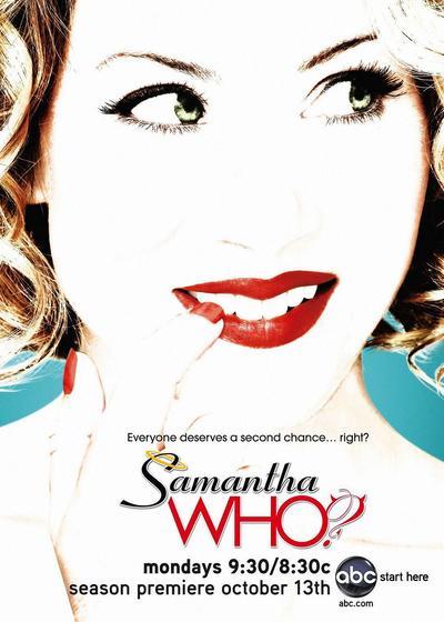 第二人生 第二季海报