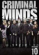 犯罪心理 第十季海报