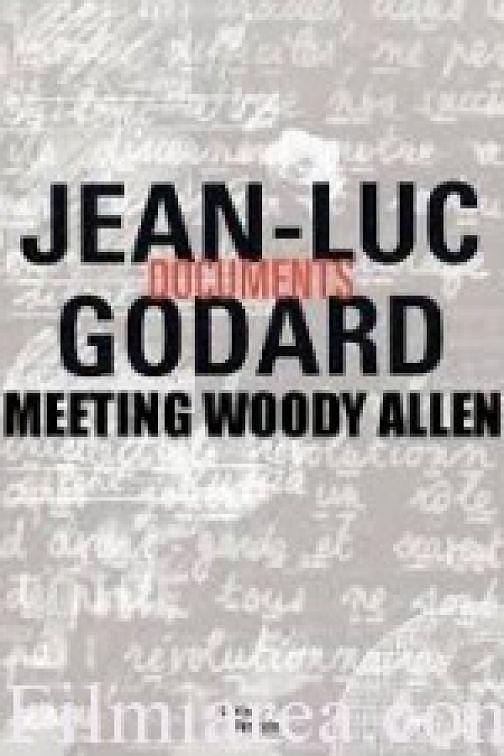 当戈达尔遇见伍迪艾伦
