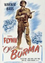 反攻缅甸海报