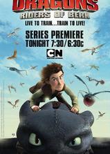 驯龙记:伯克岛的龙骑手 第一季海报