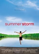 夏日风暴海报