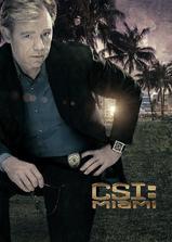 犯罪现场调查:迈阿密 第七季海报