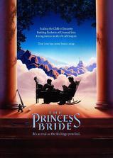 公主新娘海报